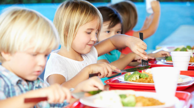 Curso Monitor de Aula Matinal y Comedor Escolar en jaen