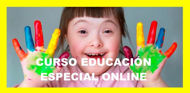 curso monitor educacion especial online