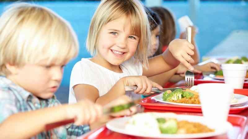 curso monitor aula matinal y comedor escolar en granada