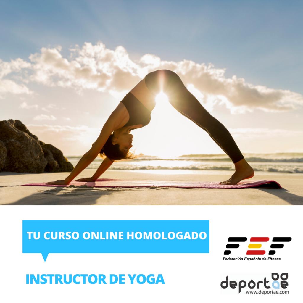 curso de instructor de yoga homologado