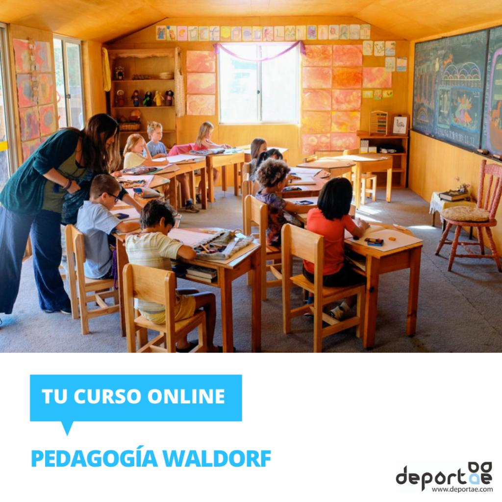 Curso de pedagogia waldorf